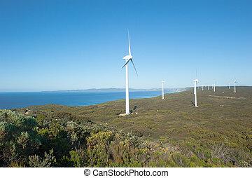 energia, australia, rinnovabile, vento, occidentale