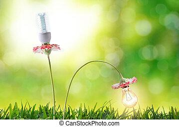 energia, eficiência, mais claro, bulbos, conservação ambiental