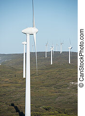 energia pulita, australia, rinnovabile, vento