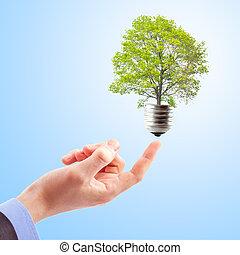 energie, pojem, obnovitelný