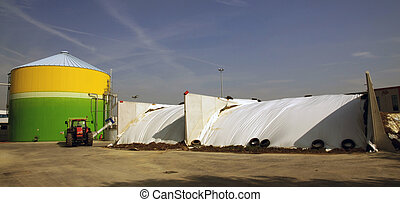 energy:, biogas, energetico, rinnovabile, valorization