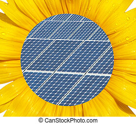 Energy concept - Sunflower macro with photovoltaic panel in...