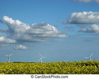 energy park - 2 renewable energies in 1: wind and rape