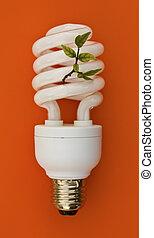 Energy saving lamp on orange background