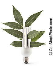 Energy saving light bulb and plant on white background,...