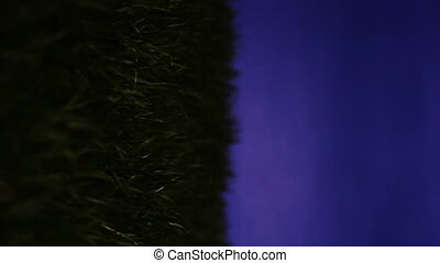 Compact fluorescent light bulb inserted into patch of grass and lighting up, vertical