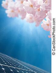 Energy - Spring an Energy