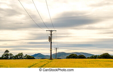 Energy Supply - Pylons running through a wheat field.