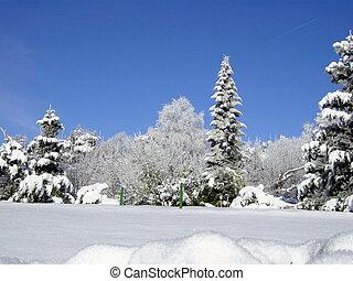 enero, blanco