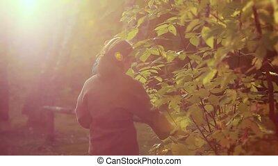 enfant, elle, promenades, automne, park., mère, 1920x1080