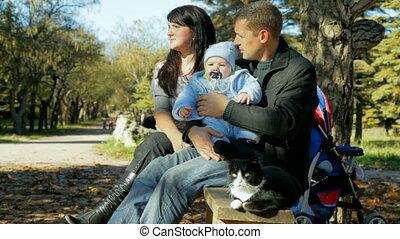 enfantqui commence à marcher, famille, chat