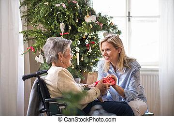 enfermera seguridad social, y, mujer mayor, en, sílla de ruedas, con, un, presente, en casa, en, navidad.