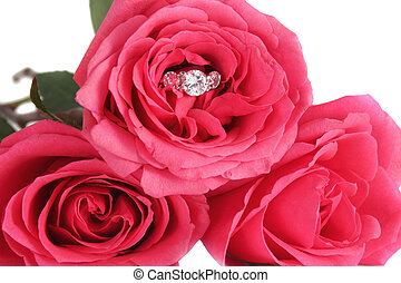 Engagement ring and roses - Sparkling diamond engagement ...