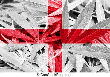 england, fahne, auf, cannabis, hintergrund., droge, policy., legalization, von, marihuana