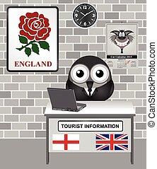 England Tourist Information - Comical bird tourist guide...