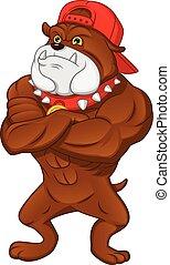 englische bulldogge, karikatur, muskel
