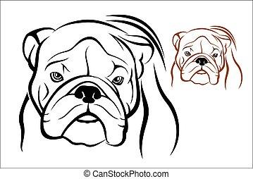 English Bulldog 1 - Vector illustration : English Bulldog on...