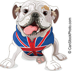 English Bulldog wearing a coat with the symbol of the...