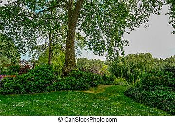 English country garden in Spring