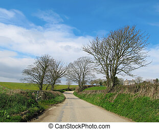 English Country Road in Cornwall