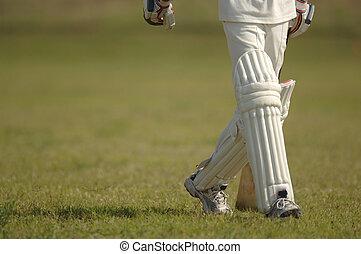 English Cricket - Cricket match
