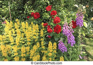 English Garden Flowers