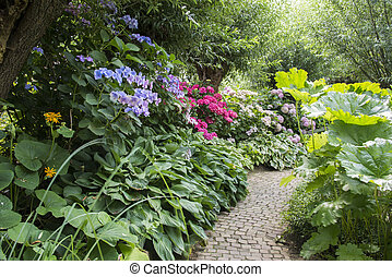english garden with flowers