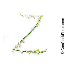 English letter Z in the alphabet of flowers bells. Calligraphy lettering