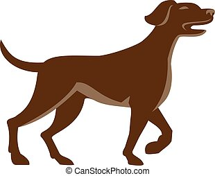 English Pointer Dog Pointing Up Retro - Illustration of an...