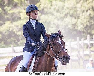 english riding stock photo images 921 english riding royalty free