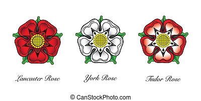 Representaions or english Rose emlems. Following the War of the Roses, the red rose of the house of Lancaster and the White rose of the house of York combined to make the dual coloured Tudor rose. EPS10 vector format.