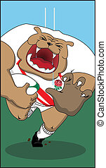 English Rugby Bulldog