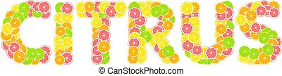 English word citrus. Summer tropical print composed of yellow lemon, green lime, pink grapefruit and orange on white background.