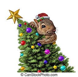 engraçado, árvore, esquilo, natal