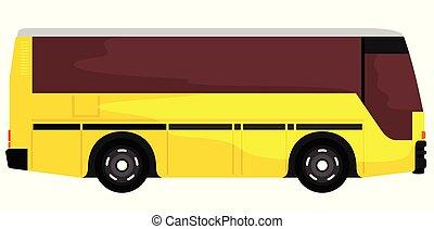 engraçado, amarela, autocarro