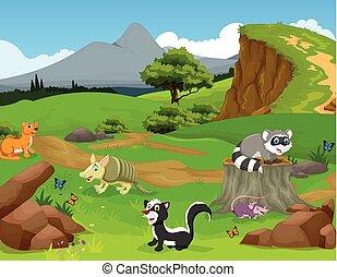 engraçado, animal, caricatura, em, a, selva