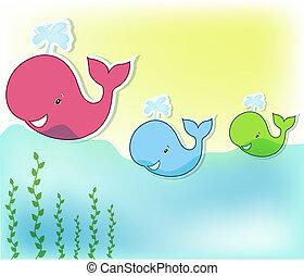 engraçado, baleia, três, mar