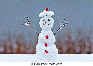 engraçado, boneco neve