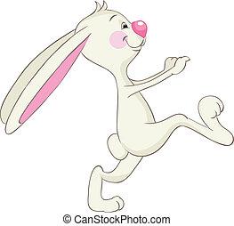 engraçado, coelho