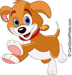 engraçado, executando, filhote cachorro