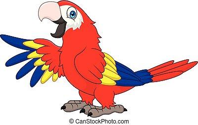 engraçado, macaw, caricatura
