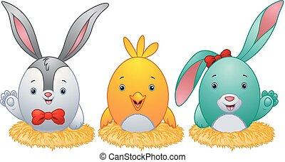 engraçado, ovos, coelho, páscoa, ninho, orelhas