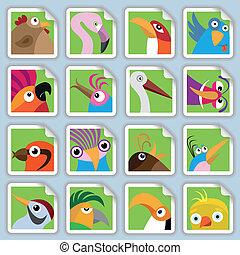 engraçado, pássaros, jogo