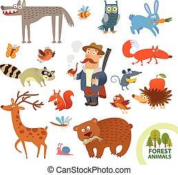 engraçado, pequeno, jogo, animais, floresta