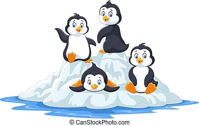 engraçado, pingüins, floe gelo, grupo, tocando