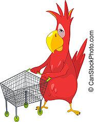 engraçado, shopping., parrot.