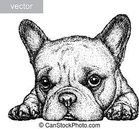 engrave dog illustration - engrave isolated dog vector...
