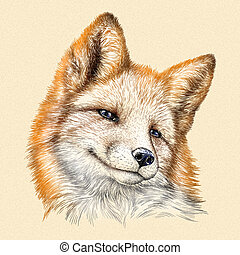 engrave fox illustration - engrave isolated fox illustration...