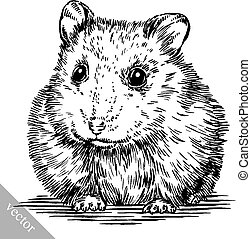 engrave ink draw hamster illustration - black and white...