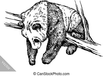 engrave ink draw panda illustration - black and white ...